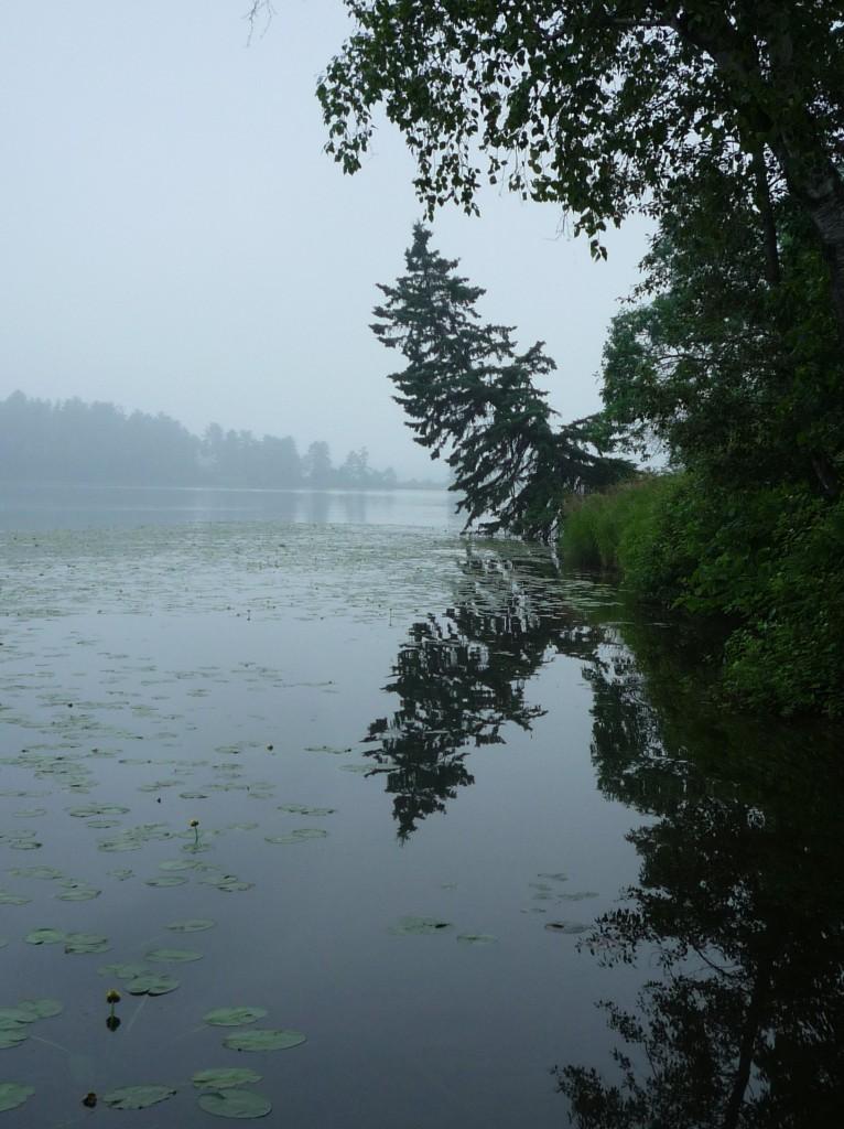 Summer2011 085
