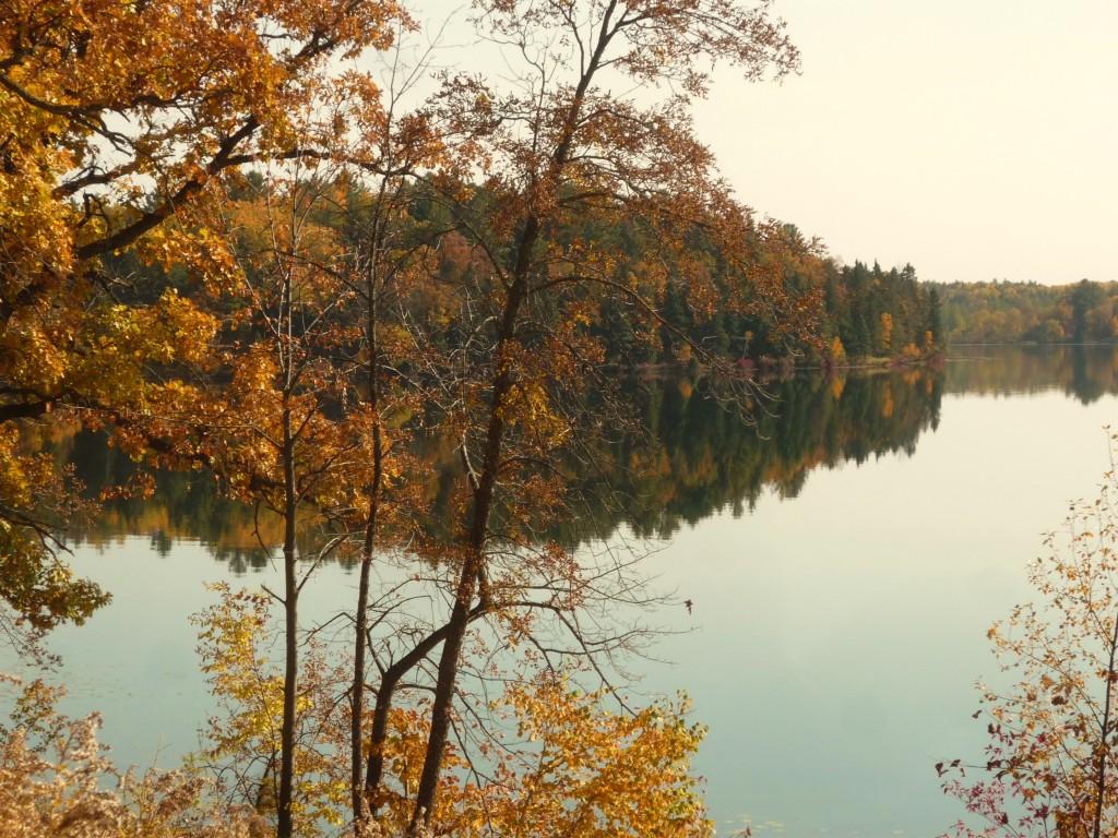 fall 2012 044