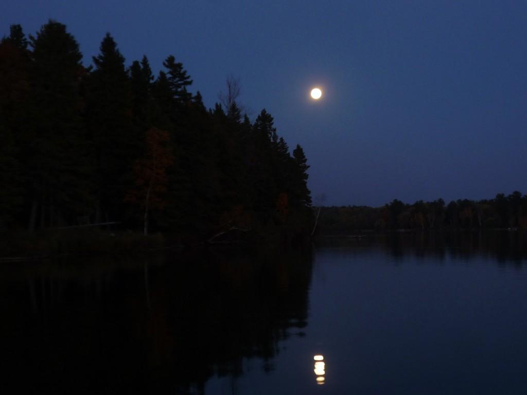 fall 2012 111