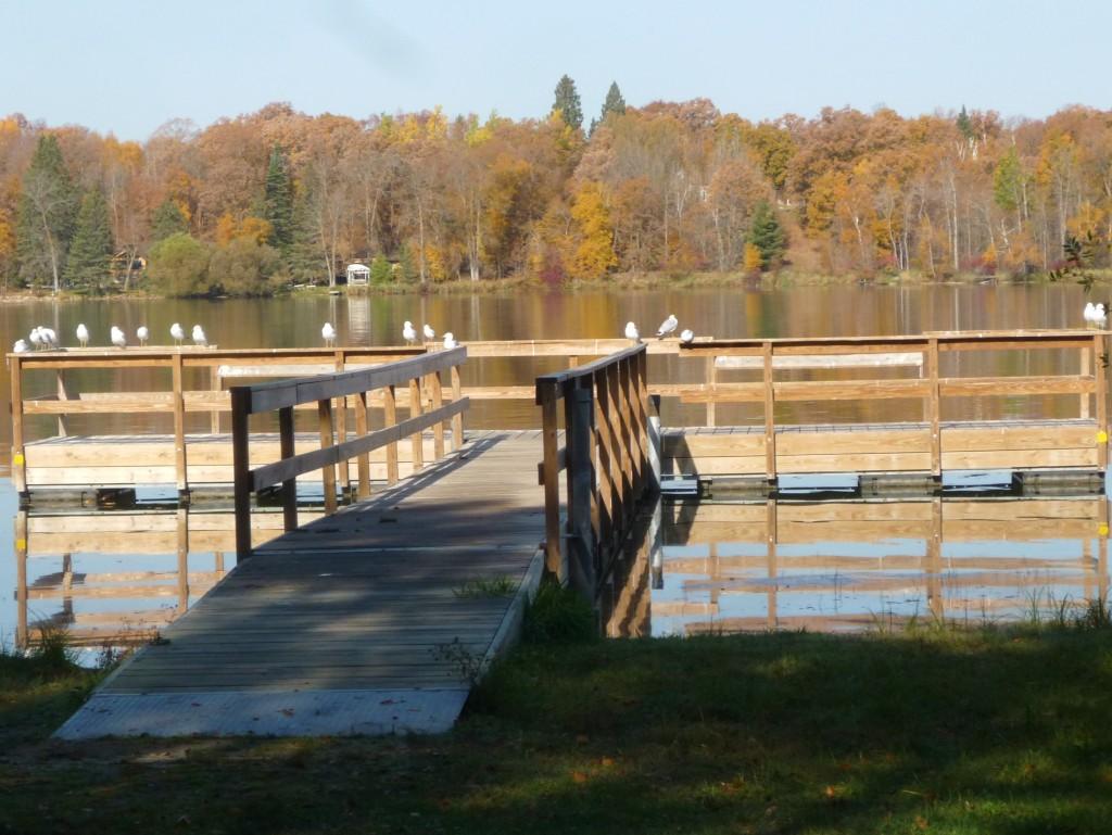 fall 2012 136